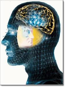 Психология трейдера и стратегии успеха