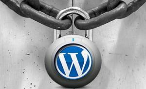 Надежная-защита-сайта-на-WordPress-300x184