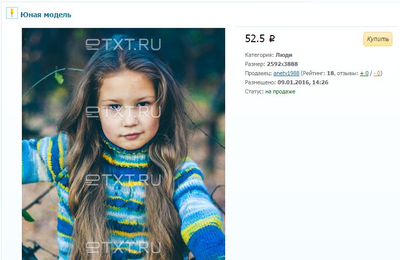Как заработать 2000 рублей в интернете на фото (2)